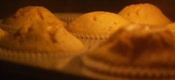Muffins βανίλιας ψησίματος στον καυτό φούρνο Στοκ φωτογραφίες με δικαίωμα ελεύθερης χρήσης