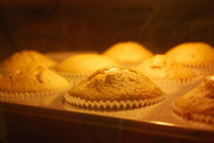 Muffins βανίλιας ψησίματος στον καυτό φούρνο Στοκ φωτογραφία με δικαίωμα ελεύθερης χρήσης