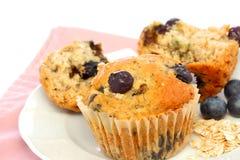 Muffins βρωμών βακκινίων Στοκ Εικόνα