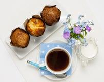 Muffins και καφές Στοκ εικόνα με δικαίωμα ελεύθερης χρήσης