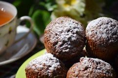 Muffins καρότων Στοκ Φωτογραφία