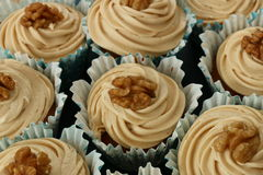 Muffins καφέ και ξύλων καρυδιάς Στοκ φωτογραφίες με δικαίωμα ελεύθερης χρήσης