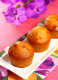 muffins κερασιών Στοκ φωτογραφία με δικαίωμα ελεύθερης χρήσης