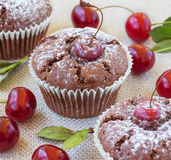 Muffins κερασιών Στοκ Εικόνα