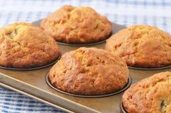 Muffins μπανανών Στοκ εικόνες με δικαίωμα ελεύθερης χρήσης
