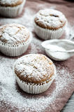Muffins που ψεκάζονται με την κονιοποιημένη ζάχαρη Στοκ Φωτογραφίες
