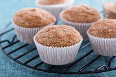 Muffins σάλτσας της Apple με τα καρυκεύματα Στοκ Εικόνες