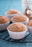 Muffins σάλτσας της Apple με τα καρυκεύματα Στοκ φωτογραφία με δικαίωμα ελεύθερης χρήσης