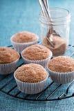 Muffins σάλτσας της Apple με τα καρυκεύματα Στοκ Εικόνα