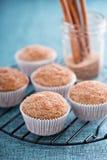 Muffins σάλτσας της Apple με τα καρυκεύματα Στοκ Φωτογραφίες