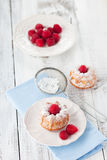 Muffins σμέουρων Στοκ Φωτογραφίες