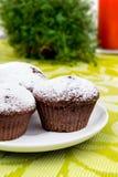 Muffins σοκολάτας με τη ζάχαρη Στοκ Φωτογραφίες
