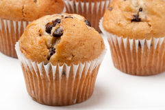 muffins σοκολάτας τσιπ Στοκ φωτογραφία με δικαίωμα ελεύθερης χρήσης