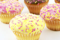 muffins σοκολάτας Στοκ εικόνα με δικαίωμα ελεύθερης χρήσης