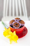 Muffins σοκολάτας με τις σταφίδες στο κόκκινο που βρίσκεται δίπλα στο φλυτζάνι Στοκ εικόνες με δικαίωμα ελεύθερης χρήσης
