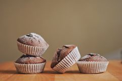 Muffins σοκολάτας Στοκ εικόνες με δικαίωμα ελεύθερης χρήσης