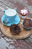 Muffins σοκολάτας Στοκ φωτογραφίες με δικαίωμα ελεύθερης χρήσης