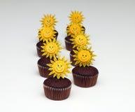 Muffins σοκολάτας Στοκ Εικόνα