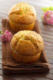 muffins σπόρος παπαρουνών Στοκ Εικόνα