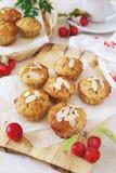 Muffins της Apple και κόκκινα μήλα παραδείσου Στοκ Εικόνες