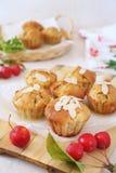 Muffins της Apple και κόκκινα μήλα παραδείσου Στοκ φωτογραφία με δικαίωμα ελεύθερης χρήσης