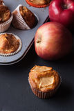 Muffins της Apple σε έναν κάτοχο Στοκ φωτογραφία με δικαίωμα ελεύθερης χρήσης