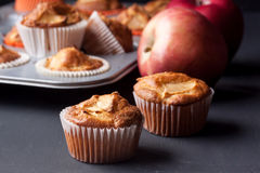 Muffins της Apple σε έναν κάτοχο Στοκ Φωτογραφία