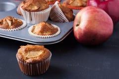 Muffins της Apple σε έναν κάτοχο Στοκ φωτογραφίες με δικαίωμα ελεύθερης χρήσης