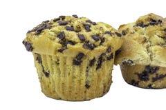 Muffins τσιπ σοκολάτας Στοκ φωτογραφίες με δικαίωμα ελεύθερης χρήσης