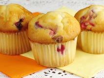 muffins των βακκίνιων πορτοκαλί Στοκ Φωτογραφία