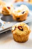 Muffins των βακκίνιων σε έναν muffin κασσίτερο Στοκ φωτογραφία με δικαίωμα ελεύθερης χρήσης