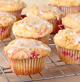 muffins των βακκίνιων Στοκ Εικόνα