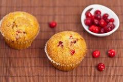 Muffins των βακκίνιων Στοκ φωτογραφίες με δικαίωμα ελεύθερης χρήσης