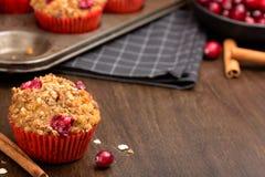 Muffins των βακκίνιων Στοκ φωτογραφία με δικαίωμα ελεύθερης χρήσης