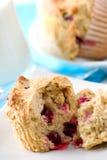 muffins των βακκίνιων Στοκ εικόνες με δικαίωμα ελεύθερης χρήσης