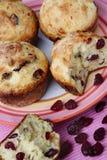muffins των βακκίνιων Στοκ Εικόνες