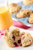 muffins των βακκίνιων Στοκ Φωτογραφίες