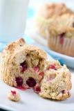 muffins των βακκίνιων Στοκ εικόνα με δικαίωμα ελεύθερης χρήσης