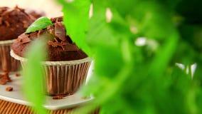 Muffins, φρέσκος που ψήνεται cupcakes φιλμ μικρού μήκους