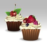 Muffins φρούτων ελεύθερη απεικόνιση δικαιώματος