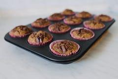 Muffins χαρουπιού Στοκ Εικόνα