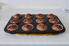 Muffins χαρουπιού στοκ φωτογραφίες με δικαίωμα ελεύθερης χρήσης