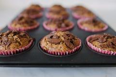 Muffins χαρουπιού Στοκ Εικόνες