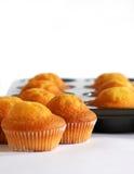 muffins ψησίματος δίσκος Στοκ εικόνες με δικαίωμα ελεύθερης χρήσης