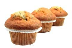 muffins Στοκ εικόνες με δικαίωμα ελεύθερης χρήσης