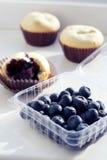 muffins βακκινίων Στοκ εικόνα με δικαίωμα ελεύθερης χρήσης