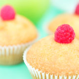 Muffins. On a green background stock image