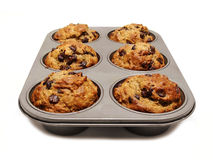 Muffins. A tray of freshly baked muffins on white Stock Images