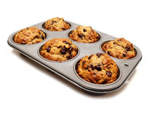 Muffins. A tray of freshly baked muffins on white Royalty Free Stock Photos