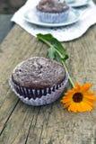 muffins Fotografia Royalty Free